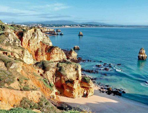 Homing chegou ao Algarve